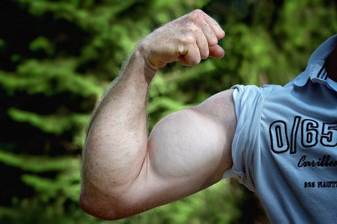 筋肉増加 クレアチン