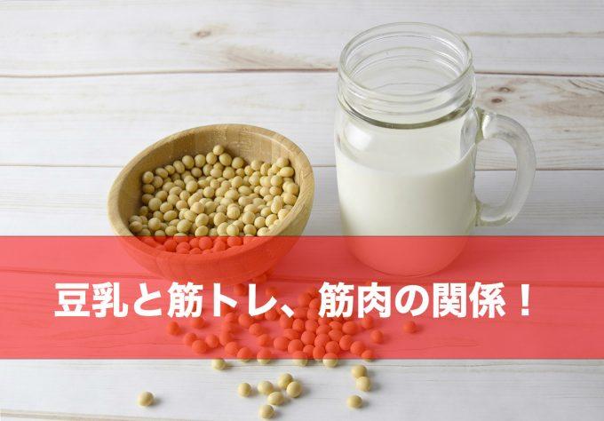 豆乳 筋トレ