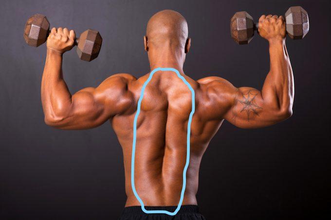 脊柱起立筋 場所