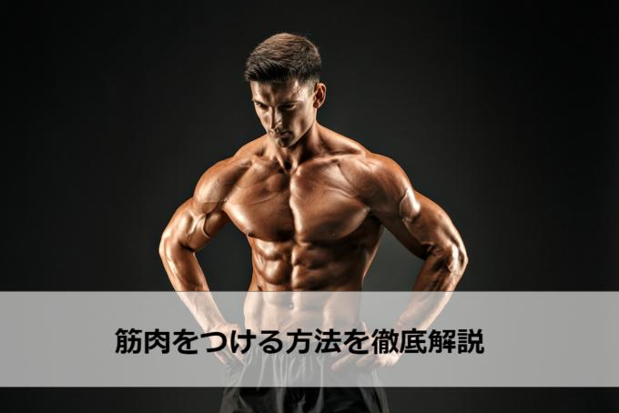 筋肉 つける