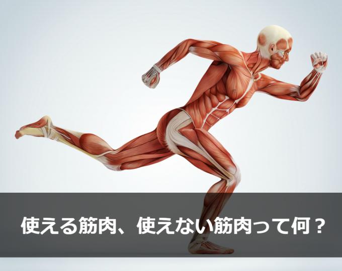 使える 筋肉 使えない 筋肉