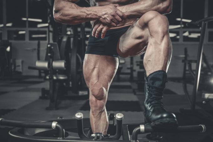 大腿四頭筋 筋トレ